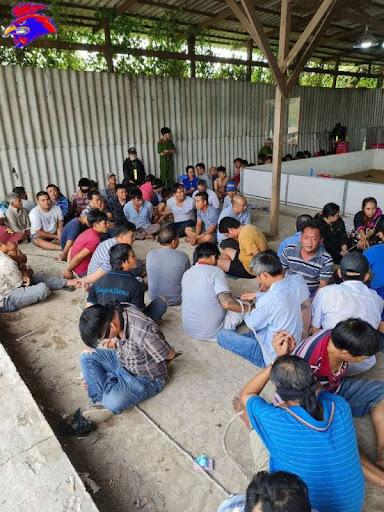 Trưa ngày 27/01, hơn 153 đối tượng bị cảnh sát bắt giữ vì tham gia cá độ đá gà.
