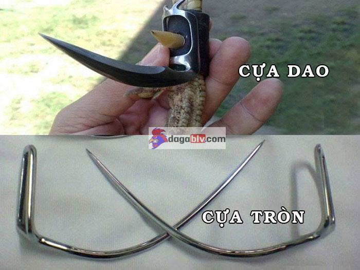 các loại cựa sắt: Cựa dao và cựa tròn phổ biến