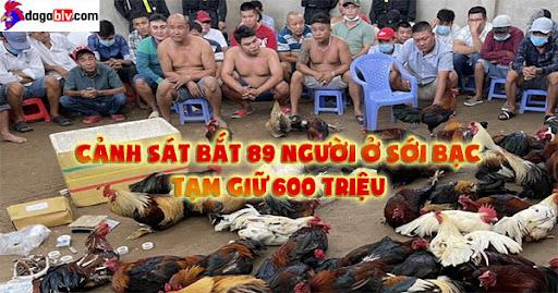 Cảnh sát bắt 89 người ở sới bạc, tạm giữ 600 triệu