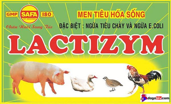 Men tiêu hóa Lactizym đặc trị khó tiêu hóa